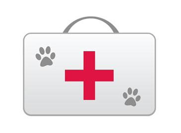 Аптечка для собаки.